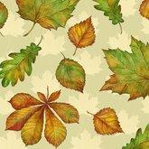 Napkin leaf Varity