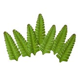 Leaves Fern 7 pcs