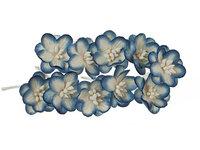 Cherry Blossom White & Blue