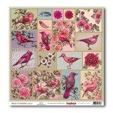 Birds of Paradise/Birds
