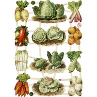 Die Cut Vegetables 7383