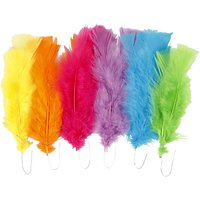 Feathers  11-16 cm  Mixed Colours