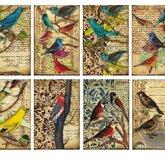 Pappersset MIni/Birds
