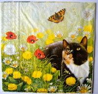 Servett Katt på sommaräng