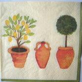 Servett Växter